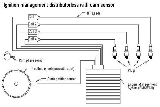 Dictator Wiring Diagram  Dictator Management System Wiring